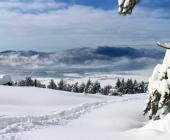 Cerkniško jezero pozimi