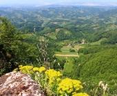 Donačka gora
