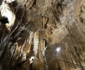 Kostanjeviška jama