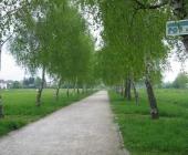 Pot spominov in tovarištva