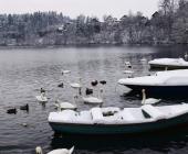 Zbiljsko jezero pozimi