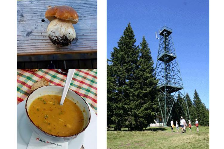 hrana in stolp