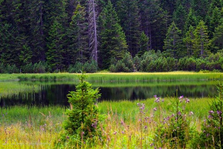 crno-jezero