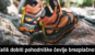 Pohodni čevlji Merrell
